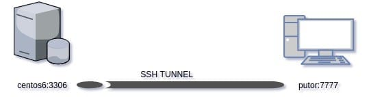A diagram showing reverse ssh forwarding ports from a server to a workstation